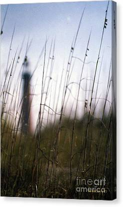 Sea Oats Dunes  Canvas Print by Dodie Ulery
