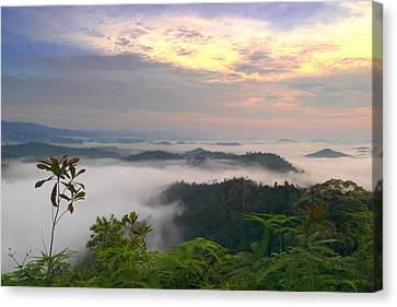 Sea Of Clouds At Panorama Hill Canvas Print