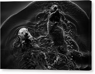 Canvas Print featuring the photograph Sea Otters Iv Bw by David Gordon