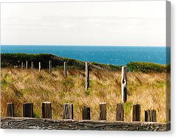 Sea Ranch Canvas Print