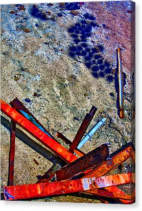 Sea. Rusty Iron And Sea Urchins.  Canvas Print by Andy Za