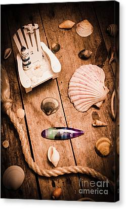 Sea Shell Decking Canvas Print by Jorgo Photography - Wall Art Gallery