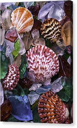 Sea Shells Among Sea Glass Canvas Print by Garry Gay