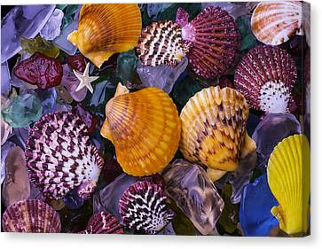 Sea Shells And Sea Glass Canvas Print by Garry Gay