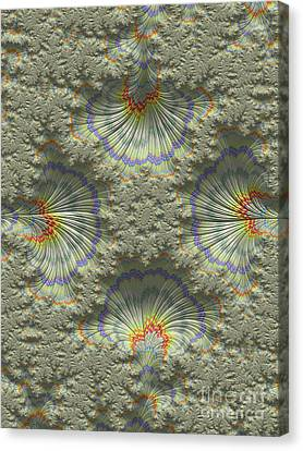 Sea Shells Canvas Print by Elaine Teague