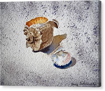 Sea Shells Canvas Print by Irina Sztukowski