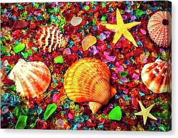 Sea Shells On Sea Glass Canvas Print by Garry Gay