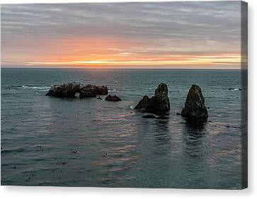 Sea Stacks In Sea Ranch Canvas Print by Jon Glaser