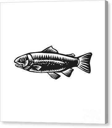 Sea Trout Spotted Canvas Print by Aloysius Patrimonio