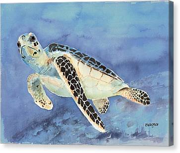 Sea Turtle Canvas Print by Arline Wagner