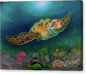 Sea Turtle II Canvas Print
