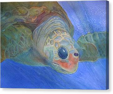 Sea Turtle IIi Canvas Print by Dee Durbin