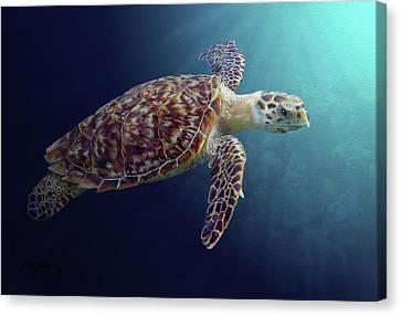 Sea Turtle Canvas Print by Kathie Miller