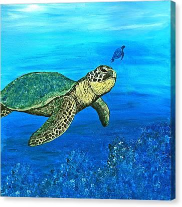 Sea Turtle Canvas Print by Sabrina Zbasnik