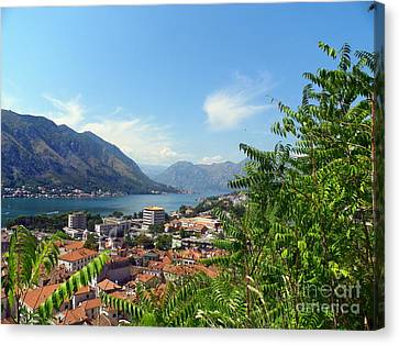 Sea View From Kotor Canvas Print by Elizabeth Fontaine-Barr