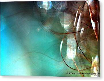 Sea World Canvas Print by JCYoung MacroXscape