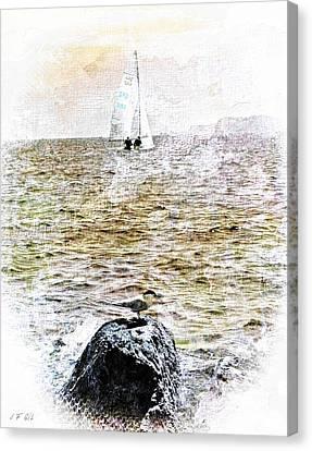Seabird L'oiseau Et La Mer Canvas Print by Jean Francois Gil