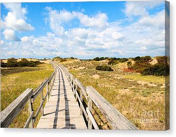 Canvas Print featuring the photograph Seabound Boardwalk by Debbie Stahre
