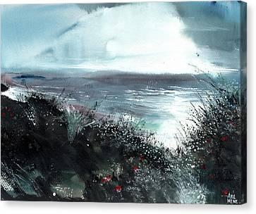 Seaface Canvas Print by Anil Nene