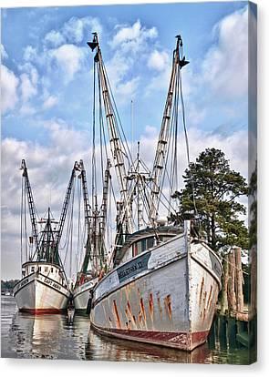 Seafood Searchers Canvas Print