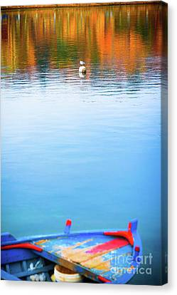 Seagull And Boat Canvas Print