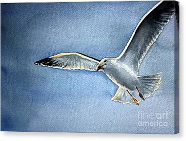 Canvas Print featuring the painting Seagull by Eleonora Perlic