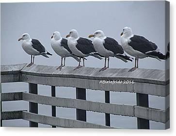 Canvas Print - Seagull Friends by April Bielefeldt