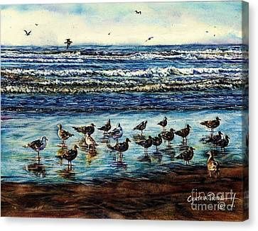 Seagull Get-together Canvas Print