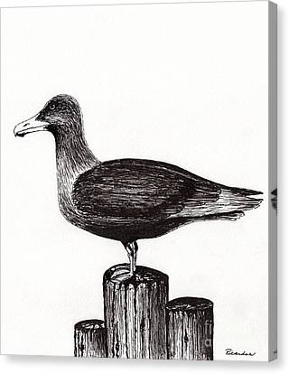 Seagull Portrait On Pier Piling E3 Canvas Print by Ricardos Creations