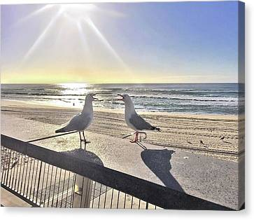 Two Waves Canvas Print - Seagull Sonnet  by Az Jackson