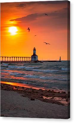 Seagulls At Sunset Canvas Print by Jackie Novak