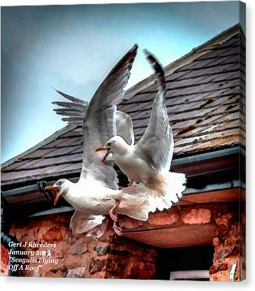Seagulls Flying Off A Roof L A Canvas Print by Gert J Rheeders
