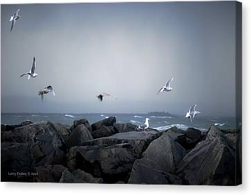 Canvas Print featuring the photograph Seagulls In Flight by Larry Keahey