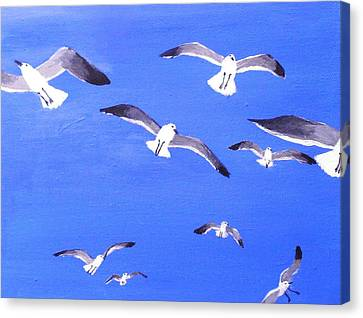 Seagulls Overhead Canvas Print