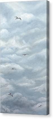 Seagulls Playground Canvas Print by Angeles M Pomata