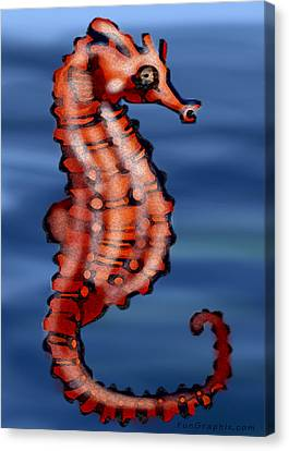 Seahorse Canvas Print by Kevin Middleton