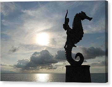 Seahorse Silhouette Canvas Print