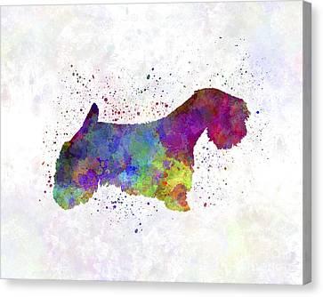 Sealyham Terrier In Watercolor Canvas Print by Pablo Romero