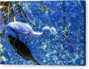 Searching For The Right Gem Canvas Print by Dennis Baswell