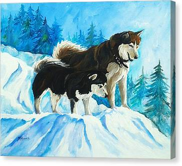 Searching Huskies Canvas Print by Marla Hoover