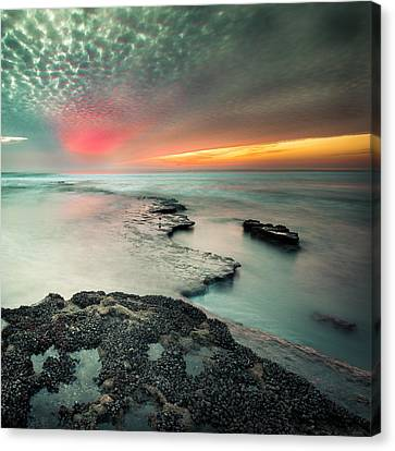 Searchlight Sunset Canvas Print