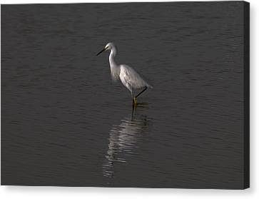 Seascape Gulf Coast, Ms F70h Canvas Print by Otri Park