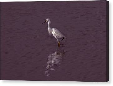 Seascape Gulf Coast, Ms F70j Canvas Print by Otri Park
