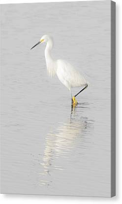Seascape Gulf Coast, Ms F70l Canvas Print by Otri Park