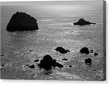 Canvas Print featuring the photograph Seascape Jenner California II Bw by David Gordon