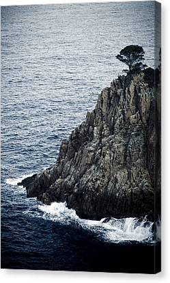 Seascape With Rocks Canvas Print by Frank Tschakert
