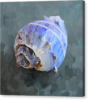 Seashell IIi Canvas Print by Jai Johnson