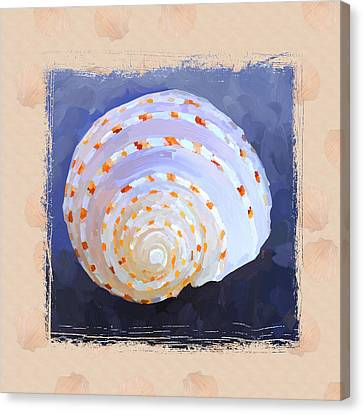 Seashell Iv Grunge With Border Canvas Print by Jai Johnson