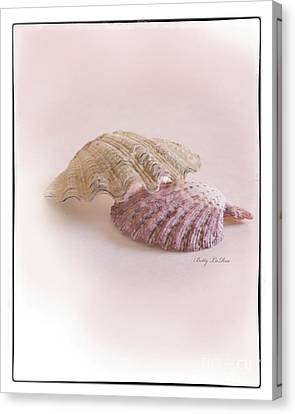 Seashell Love Canvas Print by Betty LaRue