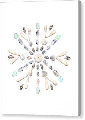 Seashell Snowflake 2 Canvas Print by Jennifer Booher